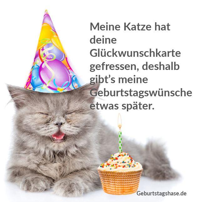 Meine Katze hat deine Glückwunschkarte gefressen, deshalb gibt's meine Geburtstagswünsche etwas später.
